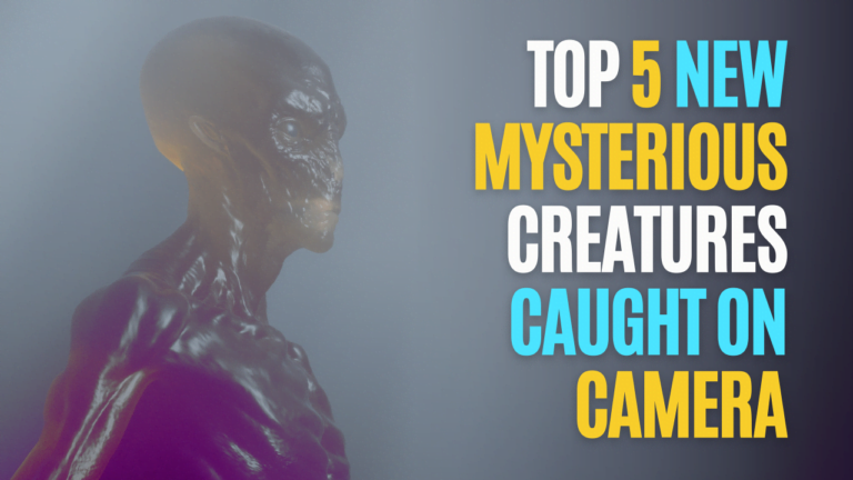 Top 5 New Mysterious Creatures Caught On Camera